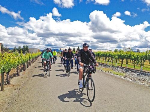 Pedal Away in Sonoma Valley